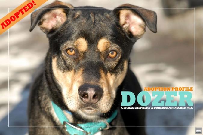 DOZER_2B