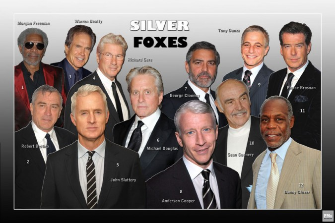Silver Fox Foto Fix 1