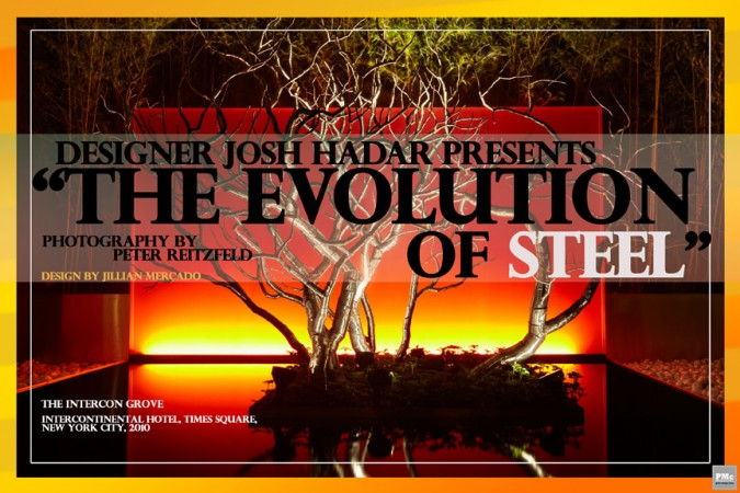 The Evolution of Steel_Cover