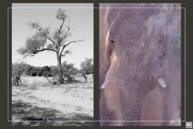 19 - Namibia - Africa- Marie - Havens