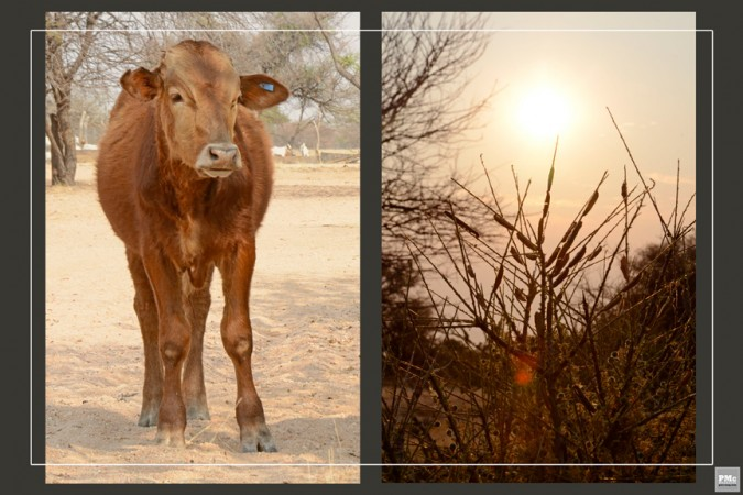 21 - Namibia - Africa- Marie - Havens