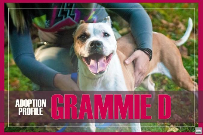 Grammie-D