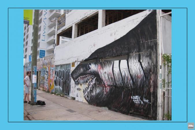 7 Sharktoof - Shark Week
