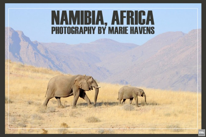 Namibia - Africa- Marie - Havens