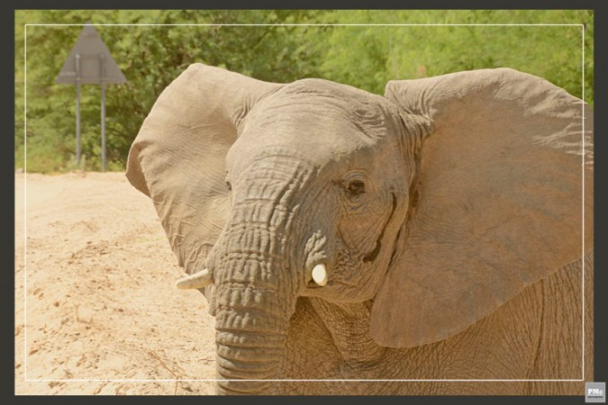 16 - Namibia - Africa- Marie - Havens