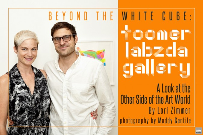 Toomer Labzda Gallery - Beyond the White Cube