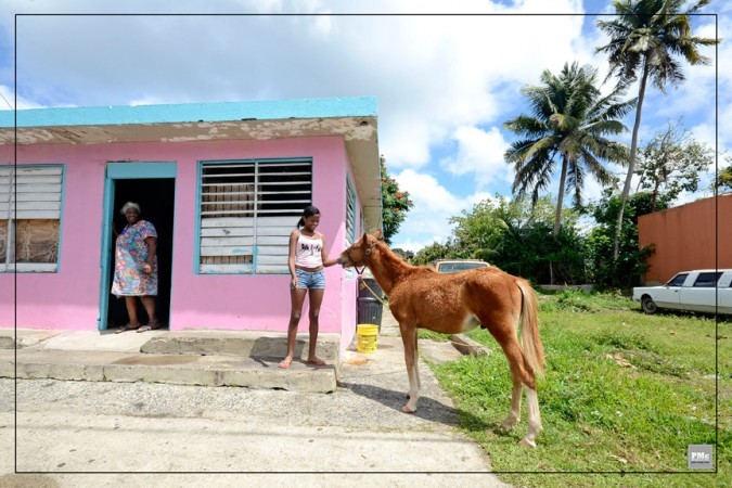 5-Puerto-Rico