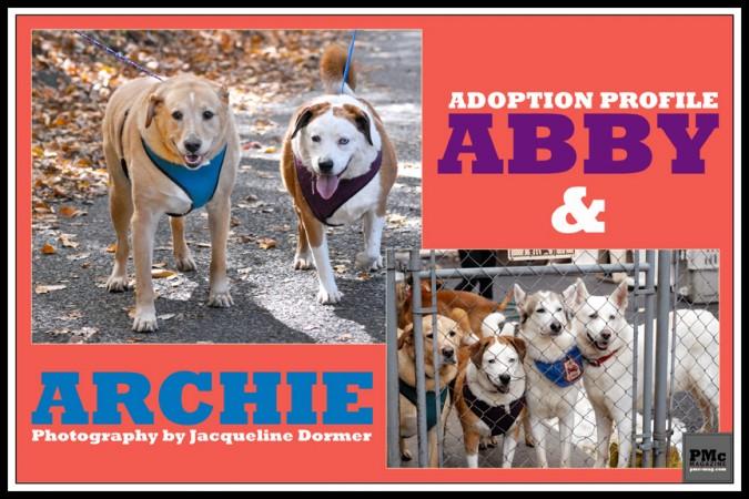 Abbie-Archie