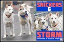 Snickers-Storm